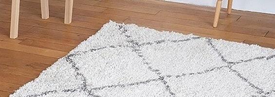 Le tapis de chambre